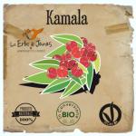 kamala-500x717