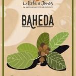 Baheda BIO-500x717